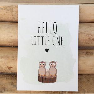 Geboorte felicitatie kaart Hello little one Uiltjes