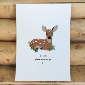 Geboorte felicitatie kaart Decoratie kaart babykamer Welkom klein wondertje Baby hertje