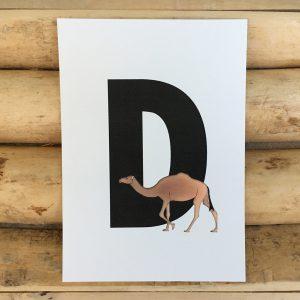 letter kaartje voor naamslinger D van Dromedaris
