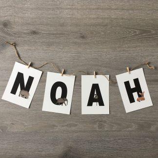 Naamslinger Noah