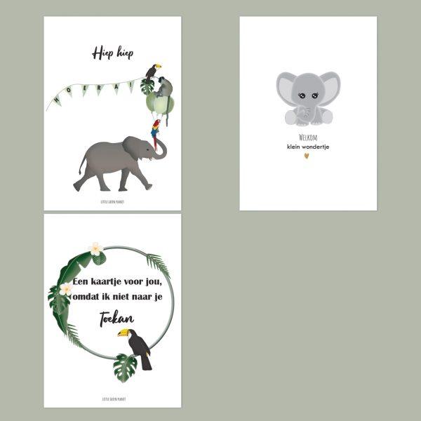 Wenskaarten set jungle dieren. Set van 3 wenskaarten. Milieuvriendelijk, chloorvrij gebleekt papier. Incl. milieuvriendelijke enveloppen.